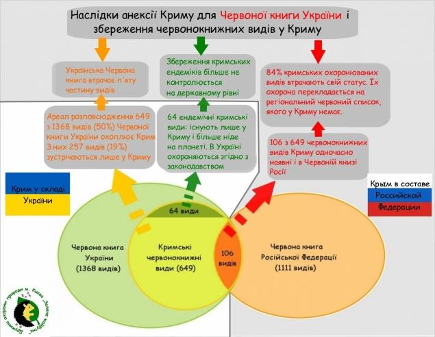 Новости в россии после выбору