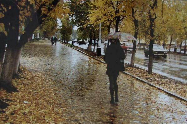 Погода в Киеве и Киевской области (19 ноября)