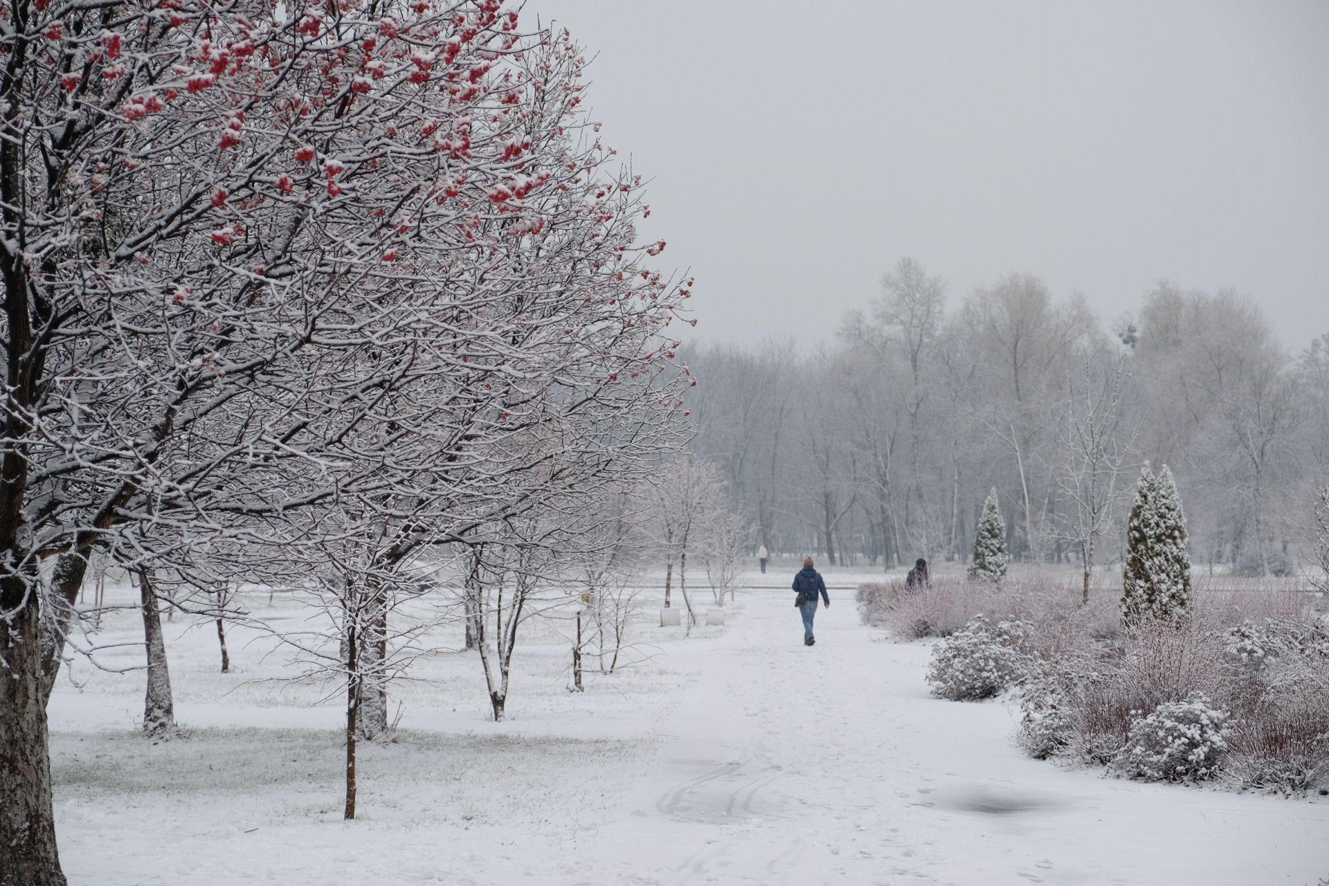 В выходные Киевщину заметет снегом