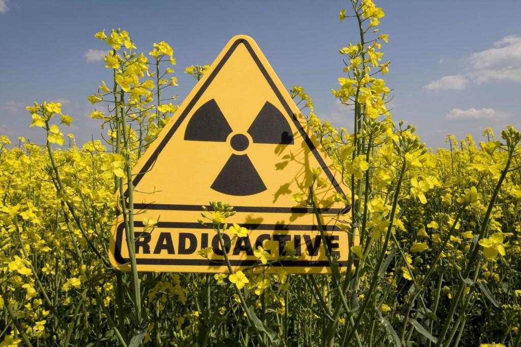 В аэропорту'Борисполь обнаружили'радиоактивного туриста