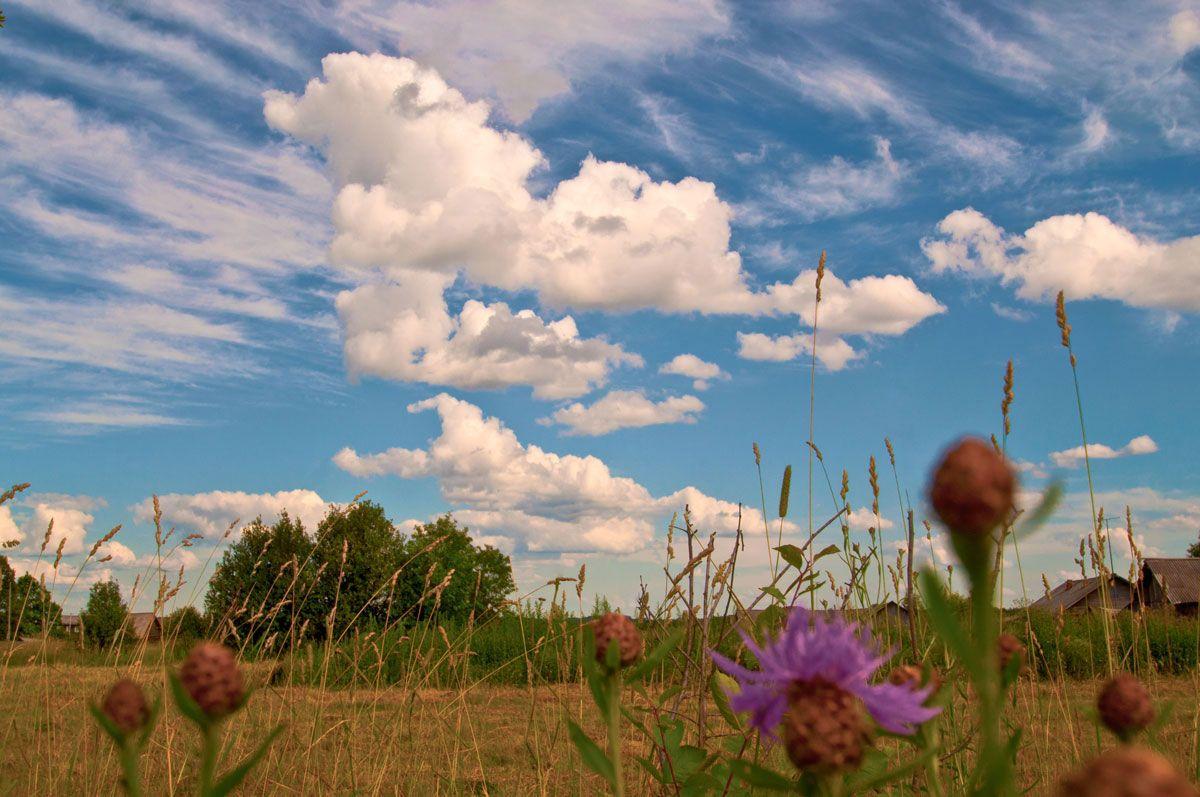 Какая погода будет вМоскве ирегионах 1сентября?