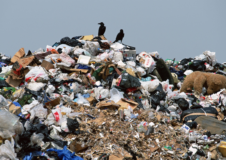 В Брестской области обнаружили нарушения на мусорных полигонах