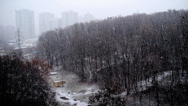 Вгосударстве Украина продолжается потепление всопровождении осадков ипорывистого ветра (КАРТА)— Синоптик