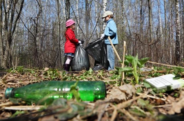 Киевлян завтра приглашают на толоку в лес