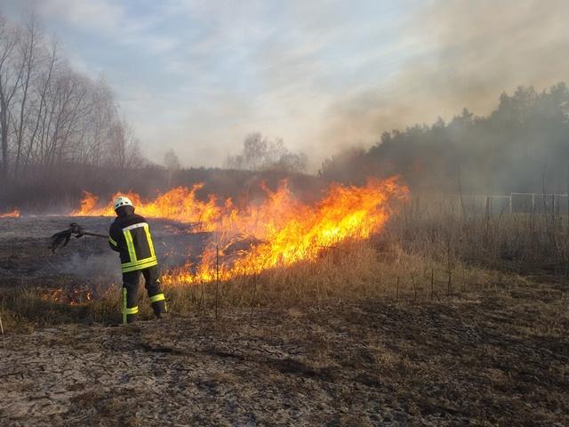 В області продовжує горіти суха трава і сміття: рятувальники застерігають