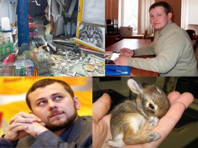 За бюджетные деньги в Киеве убили хомячков, кроликов и шиншил