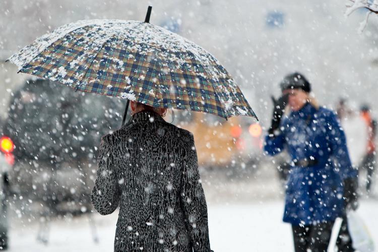 Дождь имокрый снег ожидаются вближайшие дни
