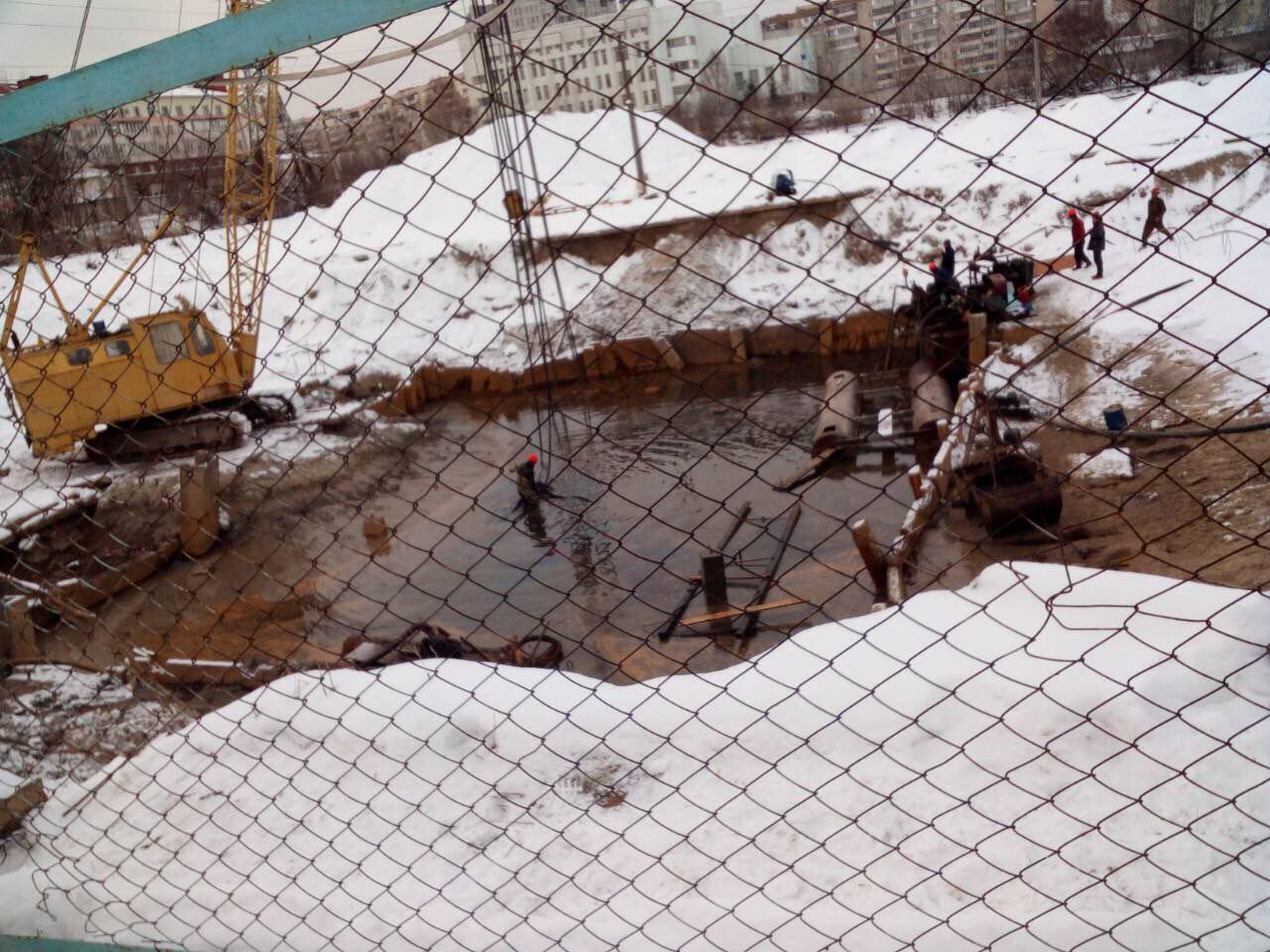 Вкиевском озере «Позняки» погибает рыба: экологи встревожены