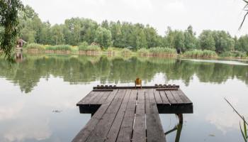 """В КП """"Плесо"""" хотят потратить под 1,5 млн бюджетных гривен на расчистку """"частного"""" озера"""