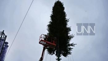 На Софийской площади в Киева начали устанавливать главную елку страны (фото, видео)