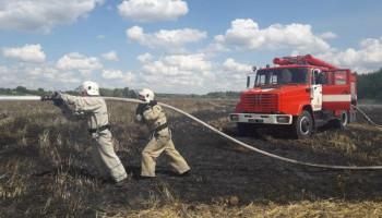На Киевщине сгорело 15 га ячменя