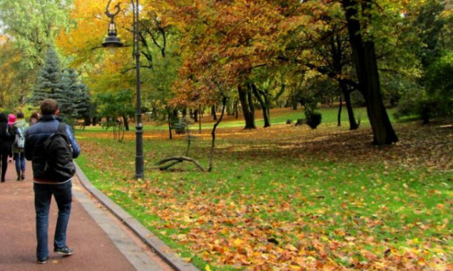 В Киевсовете заявили о тестовом запуске электронного реестра зеленых зон столицы
