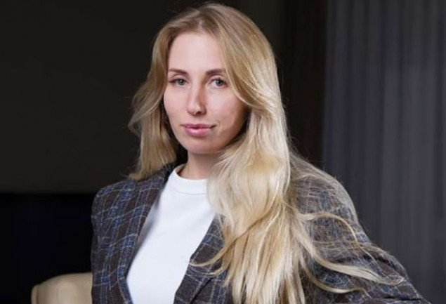 Елена Костенко: Общественный совет при ГАСИ поддержал целесообразность деятельности разрешительной Комиссии