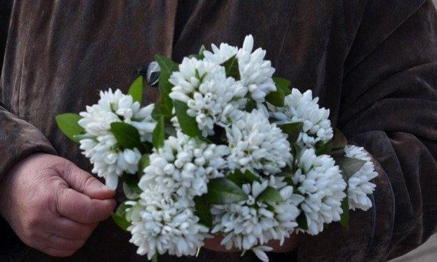 В Киеве экологическая инспекция за неделю изъяла у продавцов около 8 тысяч первоцветов