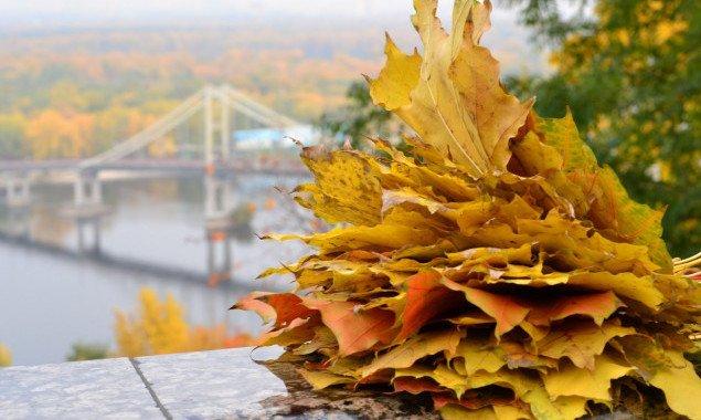Погода в Киеве и Киевской области: 30 октября 2020