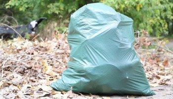 """Киевляне во время акции """"World Cleanup Day"""" собрали с улиц города около 500 кубометров мусора (фото)"""