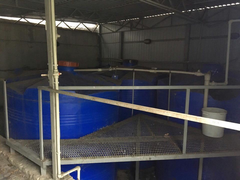 ВДонецкой области отыскали завод поизготовлению суррогатной водки